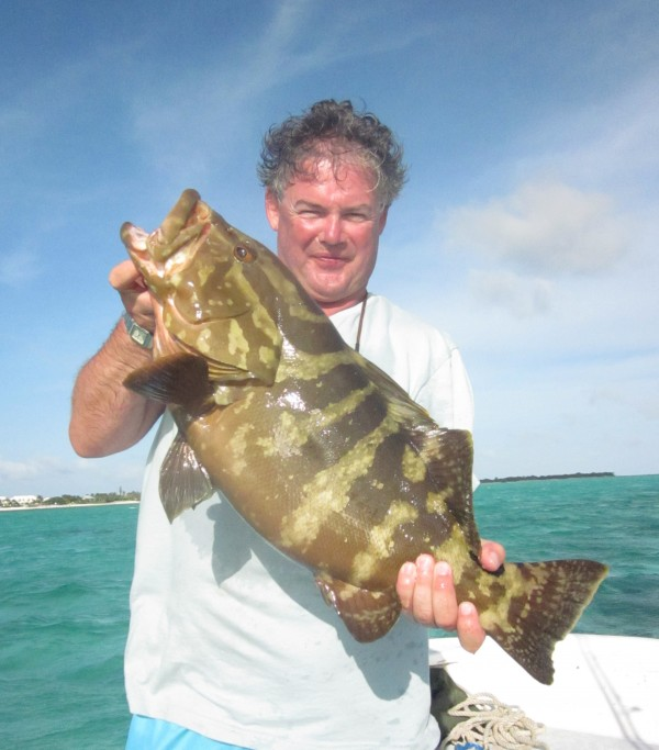 a Nassau that was released to join the spawning action.