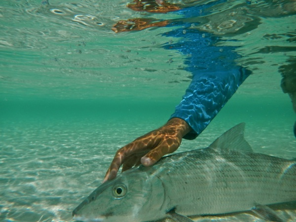 underwater bonesm