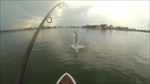 1st person tarpon shot1